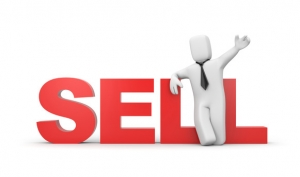 Sell online business